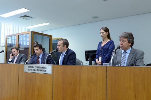 Comissão analisou proposições nesta terça-feira (11) - Foto:Pollyanna Maliniak